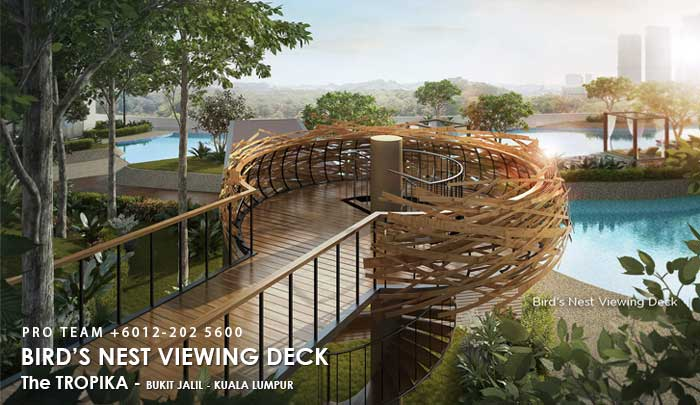 Bird's Nest Viewing Deck