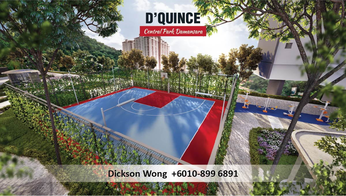 D Quince Basketball Court